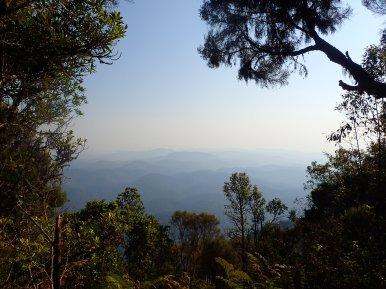 In den Hügeln des Nyungwe liegen die Quellen des Nils.
